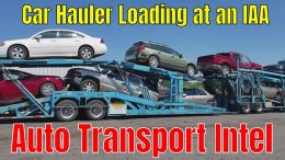 Shipping Cars From An IAA Auto Auction With Baileys Auto Transport