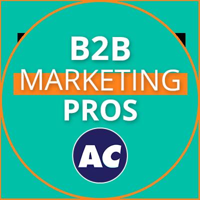B2B Marketing Pros